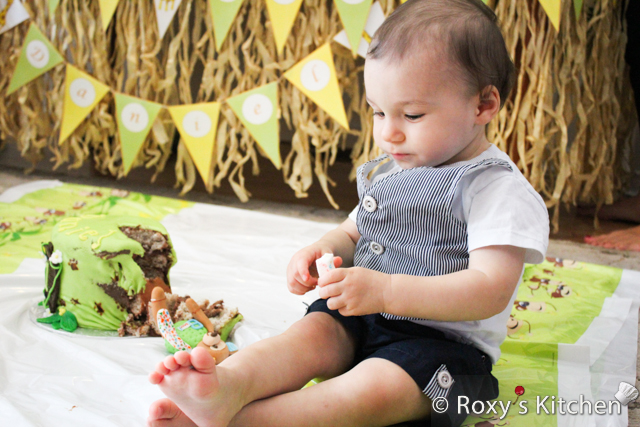 Safari / Jungle Themed First Birthday Party - Dessert Ideas: Jungle First Birthday Smash Cake