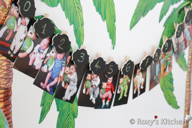 Safari Jungle Themed First Birthday Party DIY Decorations - Picture Clothesline to show 0-12 month photos of your little ones